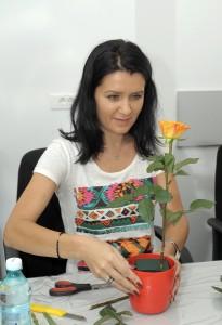 workshop aranjamente aranjamente florale corporate - atelier tematic trandafiri si lisianthus