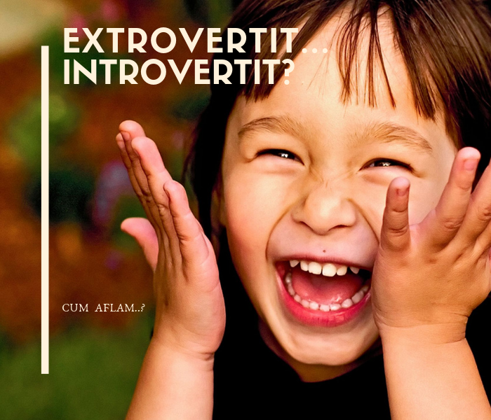 tipologie personalitate- extrovertit sau introvertit